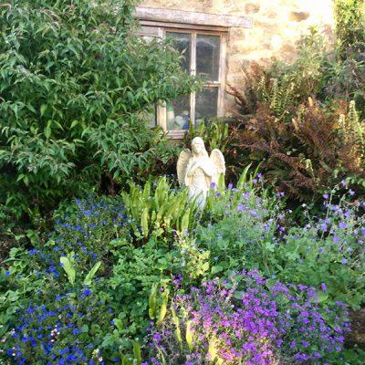 elworth-garden-16