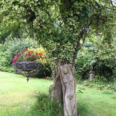 elworth-garden-22