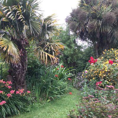 elworth-garden-8